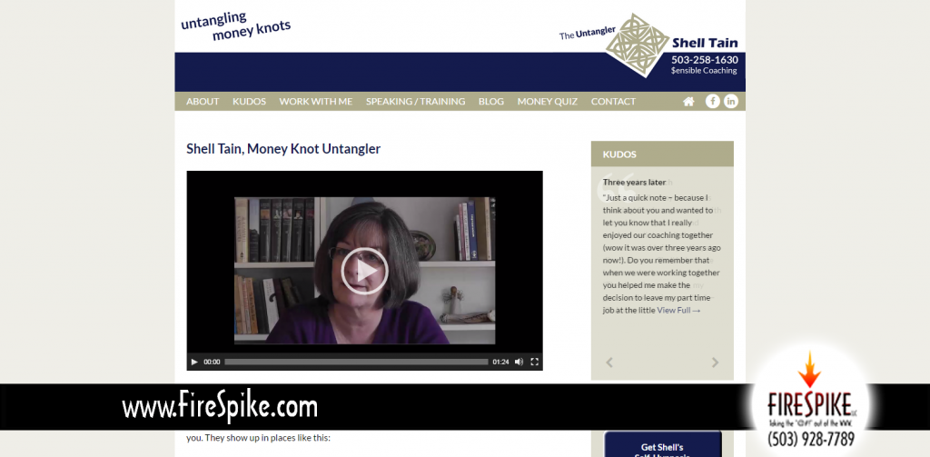 Money Coach Shell Tain's new website by FireSpike LLC